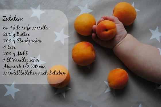 Marillenkuchen_Zutaten