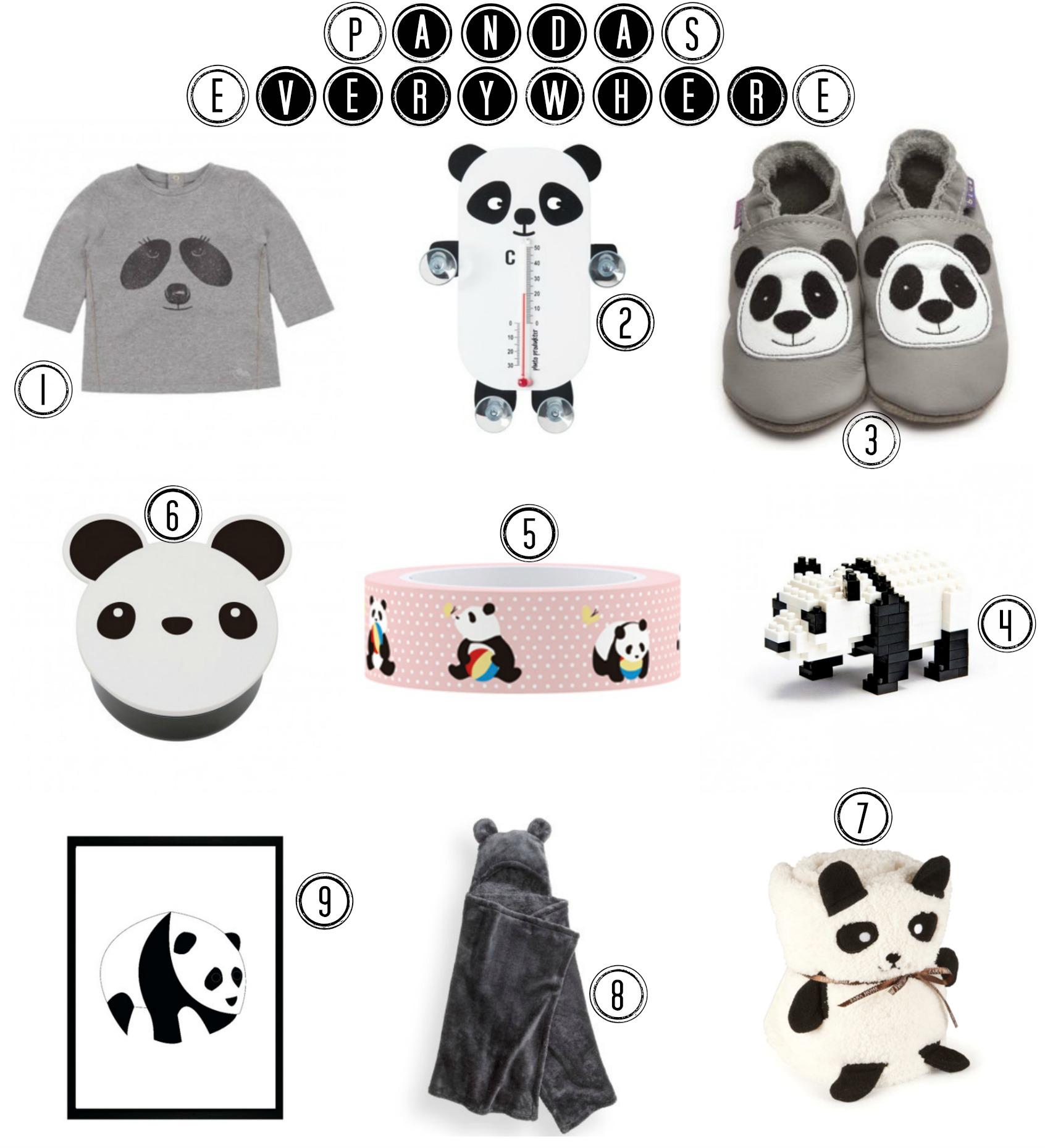 Pandas-Everywhere